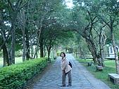 2009.08.02.奧萬大:小木屋前林蔭大道