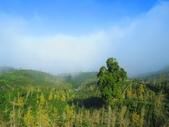 2019.11.23杉林溪森林生態渡假園區:IMG_2635.JPG