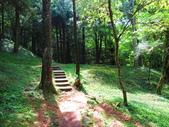 2019.05.19東眼山國家森林遊樂區:IMG_1957.JPG