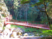 2019.11.23杉林溪森林生態渡假園區:IMG_2648.JPG