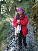 2006.11.22嘉明湖:前往向陽山屋登山步道