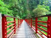 2015.10.24嘉義瑞峰竹坑溪步道:IMG_2434.JPG