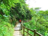 2015.10.24嘉義瑞峰竹坑溪步道:IMG_2437.JPG