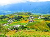 2015.08.15花蓮六十石山:IMG_1676.JPG