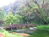 2015.10.11宜蘭福山植物園:IMG_2330.JPG