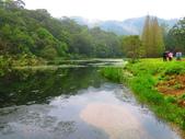 2015.10.11宜蘭福山植物園:IMG_2332.JPG