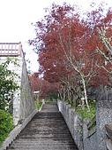2007.09.01太平山之旅:太平山山莊樓梯jpg