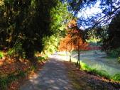 2019.11.23杉林溪森林生態渡假園區:IMG_2649.JPG