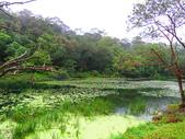 2015.10.11宜蘭福山植物園:IMG_2340.JPG