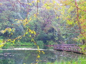 2015.10.11宜蘭福山植物園:IMG_2342.JPG
