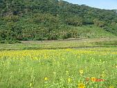 2007.11.23長濱三間屋:DSC00008.JPG
