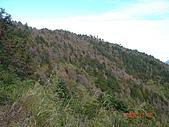 2005.12.10郡大山:DSC01891.JPG