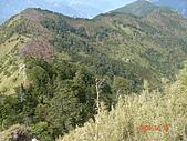 2005.12.10郡大山:DSC01912.JPG