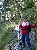 2006.11.22嘉明湖:前往向陽山屋登山步道.jpg