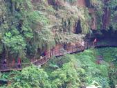 2015.10.24嘉義瑞峰竹坑溪步道:IMG_2462.JPG