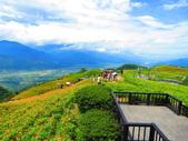 2015.08.15花蓮六十石山:IMG_1672.JPG