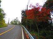 2015.11.13嘉義縣特富野古道:IMG_2797.JPG