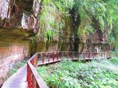 2015.10.24嘉義瑞峰竹坑溪步道:IMG_2479.JPG