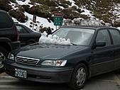 2011.02.18櫻花密境-武陵農場:DSCF0780.JPG