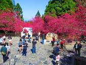 2021.02.15九族文化村:IMG_4796.JPG