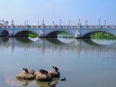 2015.05.09台南都會公園奇美博物館:IMG_1134.JPG