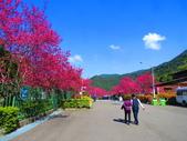 2021.02.15九族文化村:IMG_4929.JPG