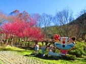 2019.02.01福壽山農場:IMG_0768.JPG