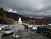 2011.02.18櫻花密境-武陵農場:DSCF1020.JPG
