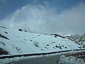 2011.02.18櫻花密境-武陵農場:DSCF0782.JPG