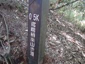 2015.08.02大雪山鳶嘴山:DSC07578.JPG