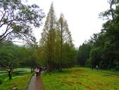 2015.10.11宜蘭福山植物園:IMG_2337.JPG