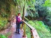 2015.10.24嘉義瑞峰竹坑溪步道:IMG_2472.JPG