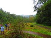 2015.10.11宜蘭福山植物園:IMG_2323.JPG