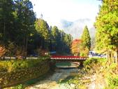 2019.11.23杉林溪森林生態渡假園區:IMG_2639.JPG
