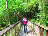 2015.10.24嘉義瑞峰竹坑溪步道:IMG_2431.JPG