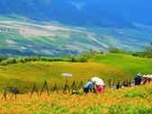 2015.08.15花蓮六十石山:IMG_1673.JPG