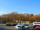 2017.04.29日本足利紫藤公園:IMG_6086.JPG