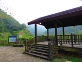 2015.10.24嘉義瑞峰竹坑溪步道:IMG_2413.JPG