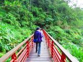 2015.10.24嘉義瑞峰竹坑溪步道:IMG_2415.JPG