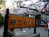 2010.03.19阿里山賞櫻:DSC07791.JPG