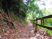 2015.10.24嘉義瑞峰竹坑溪步道:IMG_2432.JPG