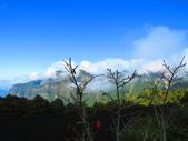 2018.12.15阿里山對高岳步道:IMG_0566.JPG
