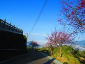 2020.02.08石山引水道步道:IMG_3100.JPG