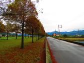 2019.12.30宜蘭松羅國家步道:IMG_2797.JPG