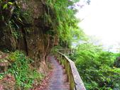 2015.10.24嘉義瑞峰竹坑溪步道:IMG_2482.JPG