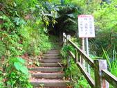 2015.10.24嘉義瑞峰竹坑溪步道:IMG_2417.JPG