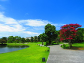 2020.05.30彰化成美園區:IMG_3825.JPG