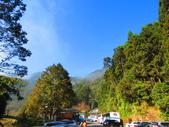2019.11.23杉林溪森林生態渡假園區:IMG_2643.JPG