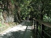2009.08.02.奧萬大:前往吊橋