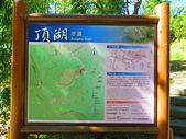 2015.12.19嘉義大凍山國家森林步道:IMG_3510.JPG